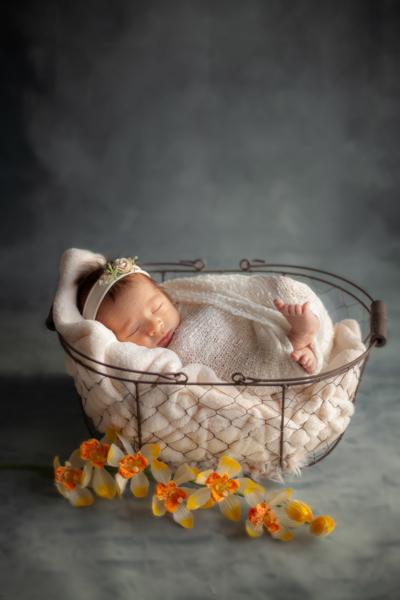 naissance gris et jaune