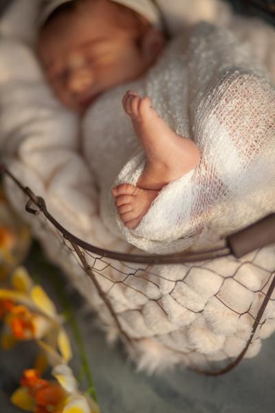 photo pieds bébé