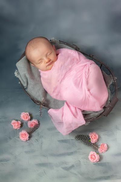 naissance gris et rose
